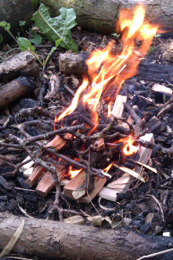 fire camp forest school